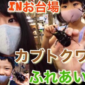 【昆虫イベント】カブト・クワガタふれあいの森2021 in お台場