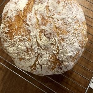 在宅アクティビティ とうとうパンを。。。