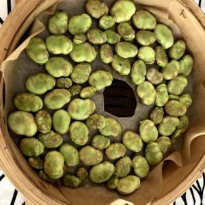 そら豆好きがたどり着いた李映林先生のお教室の翌日