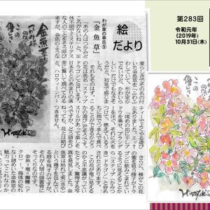『わが家の草花⑨ 金魚草』