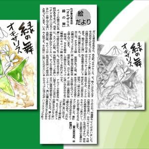 『わが家の草花④ オキザリス緑の舞』