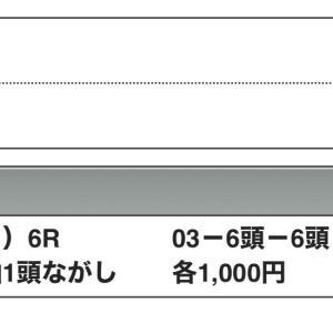 京成杯・3連単1万1750円の万馬券的中を筆頭に高配当連発です!