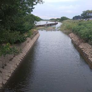 多々良沼 おかっぱり釣行 午後の部