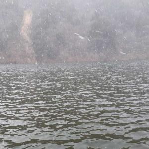 東古屋湖に行ってきました。ボート&陸っぱり