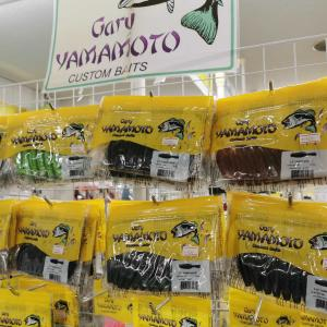 熊谷店 バス商品入荷 ヤマタヌキ再入荷