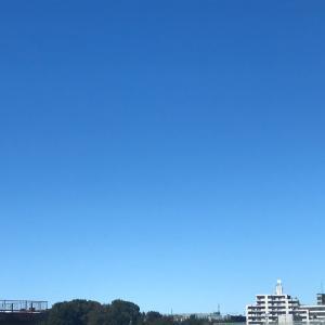 台風一過☆明日は満月♪