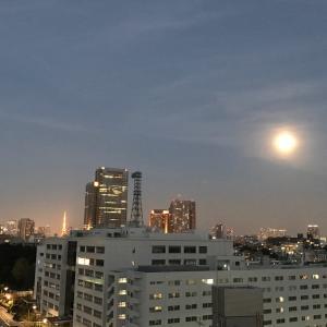 大嘗祭直前☆明日は満月
