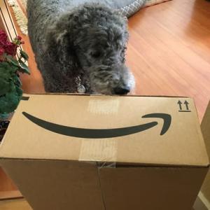箱が届きました