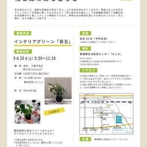 苔玉ワークショップのご案内 ... 東播磨生活創造センター「かこむ」
