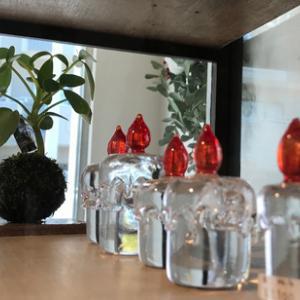 苔玉とガラス...