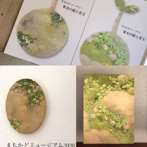 『草木の絵と苔玉』 まちかどミュージアム ... 開催中の中休み