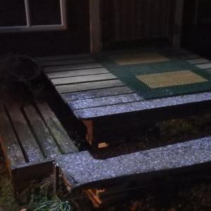 記録、1月5日、初雪