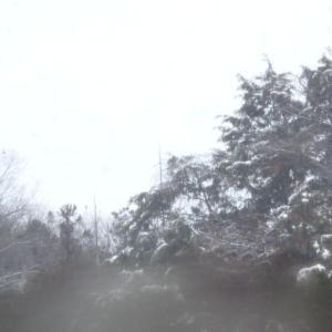 記録、初積雪、雨のち雪のち雨