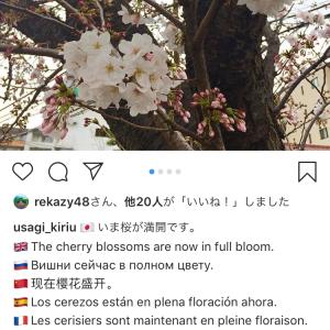 インスタグラムで多言語