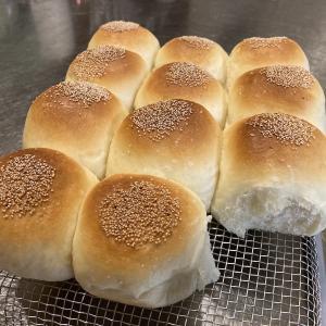 パンに狂う