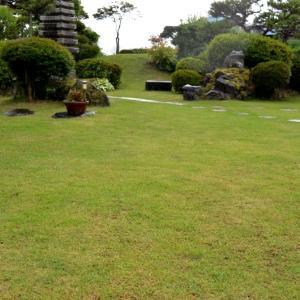 芝 生 刈 草 刈