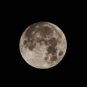 月と寝言。