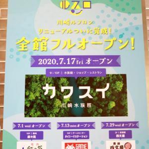 川崎水族館「カワスイ」のウォールアート製作、参加してきました!☆今週の金曜2020年7月17日のオープン前