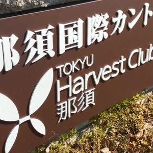 【緊急募集】那須国際CC&トライフィールドゴルフ合宿にキャンセルが出ました!
