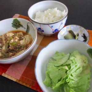 麻婆豆腐,サラダ for lunch
