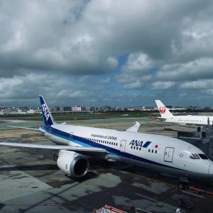 やっと名古屋に帰ってきました!