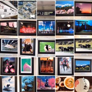 日本画と写真の出会い2人展