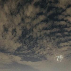 茨木の空今年模様後100日