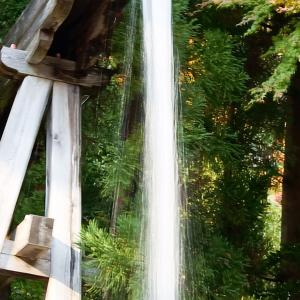 勝尾寺さん滝