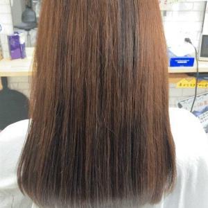 髪質改善シーズン到来