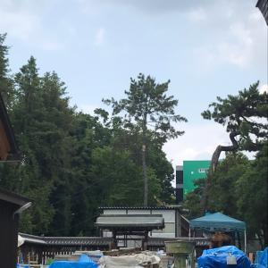 茨木神社さん
