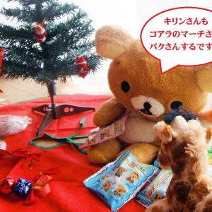 なかなか完成しないクリスマスツリーさん!