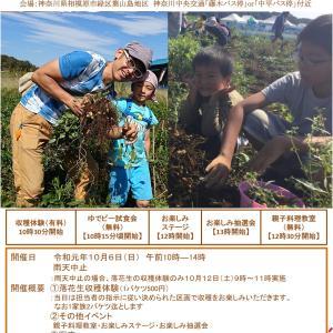 葉山島落花生収穫祭・落花生の祭(10月6日 日曜日)