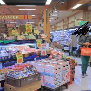 食品ロスの主因は店舗への送り込み(前年比○○%必達がもたらす弊害)