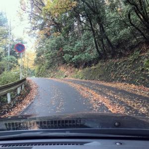 突然 城山湖へドライブに♪