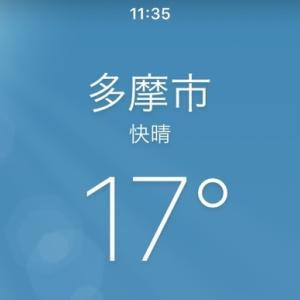 暑いくらい?です すごく暖かい