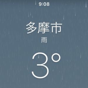 お寒い雨の朝は日曜朝市へ
