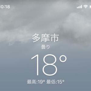 今日はなんだかえらく暖かい!?