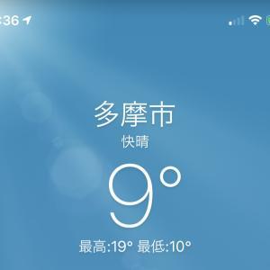 今シーズン一番の冷え込みから暖かい日
