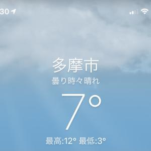 お寒い日曜日の午前中は・・・
