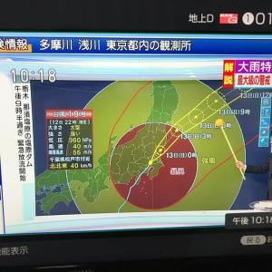 台風一過(*´∀`*)♪