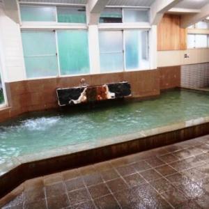 静岡県 熱海温泉「ホテル日航亭」