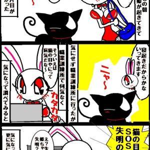 猫の目ヤニは●●の知らせ