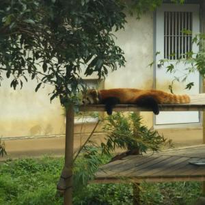 動植物園に行きました♡パートⅠ