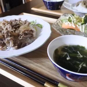 牛丼の夕食☆と、台風が去って、、