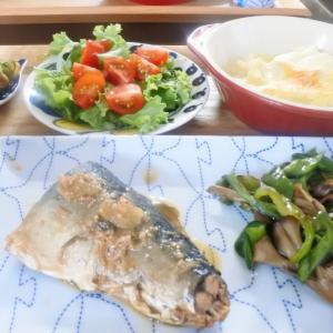 サバの味噌煮&レンチングラタンの夕食♡と、受け入れること