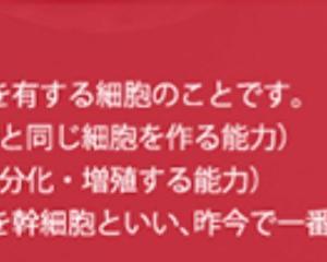 目元パックオプション~平塚エステperidot
