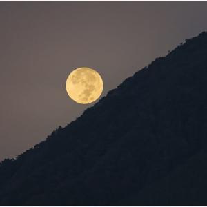 一年で最も美しい月のはず
