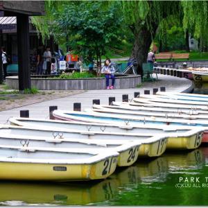 常盤公園の池