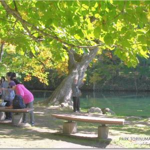 鳥沼公園を・・露出とコントラスト