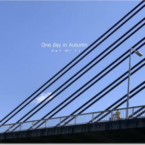 ツインハープ橋/雪虫